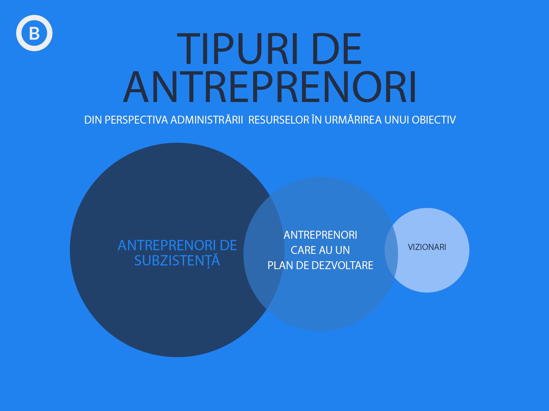 Tipuri de Antreprenori din perspeciva administrarii resurselor în vederea atingerii unui obiectiv